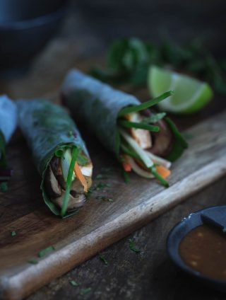 Winter Inspired Rice Paper Rolls (GF)