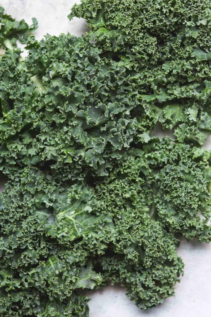 Close up flat lay image of green curly kale for vegan kale pesto