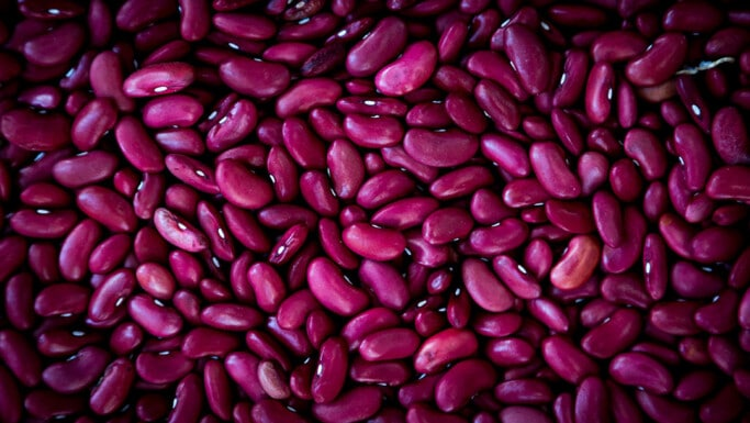 Close up image of red uncooked beans