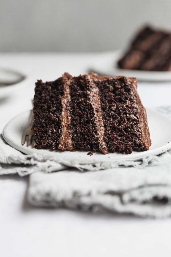 Close-up image of a slice of vegan chocolate cake.