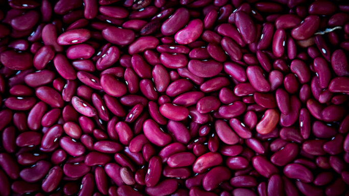 Close up of dried legumes