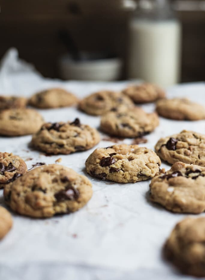 A front on image of rows of chocolate chip cookies with a bottle of milk in the background