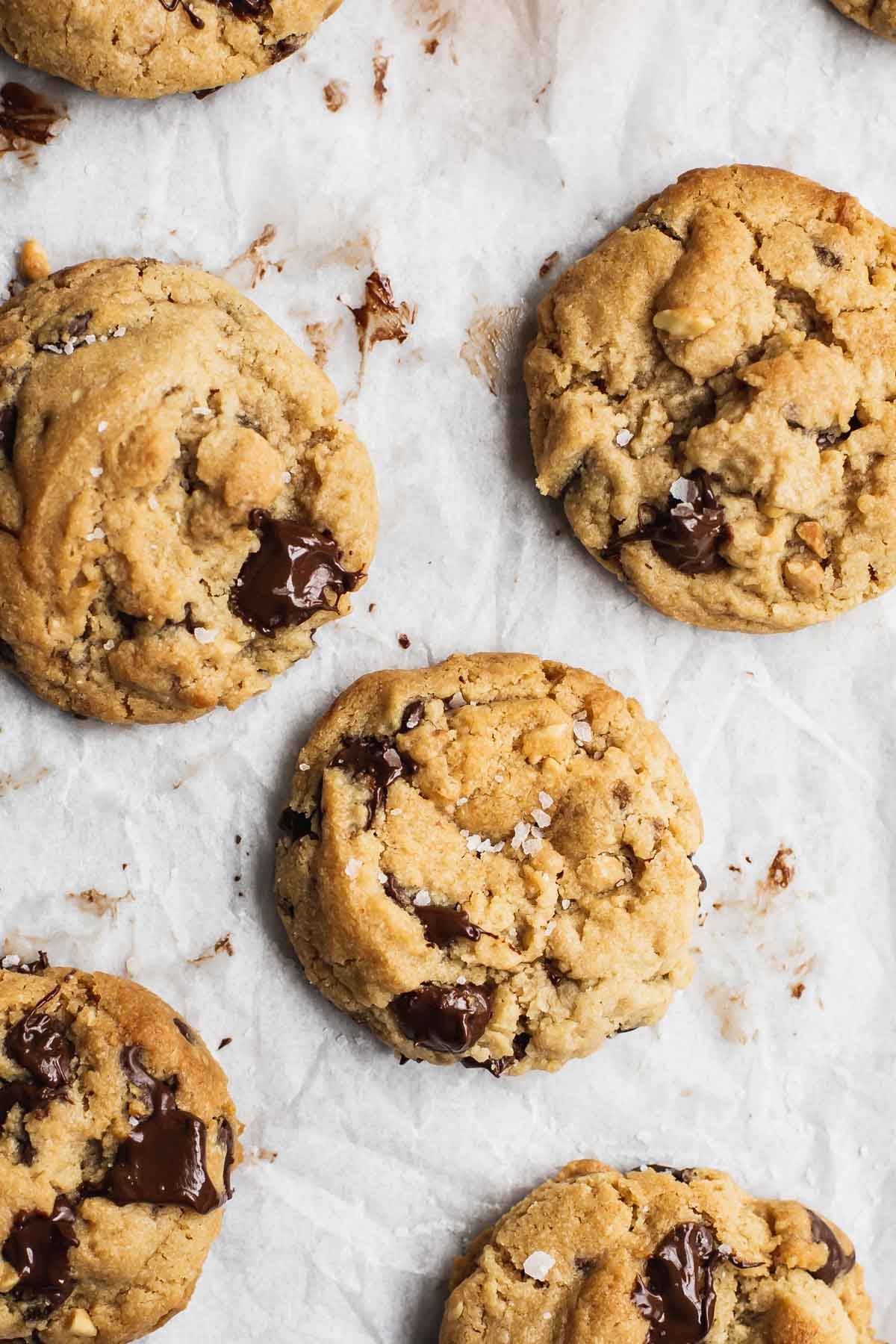 Freshly baked chocolate chip cookies on baking paper.